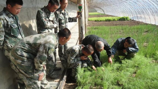 2012年——2013年康千赢国际娱乐官网地址完成了对解放军总装备部全国16家基地的技术指导